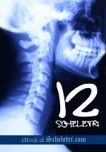 12 Scheletri